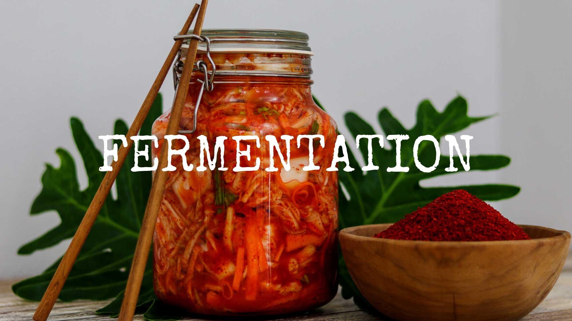 Fermentation_Kochkurs